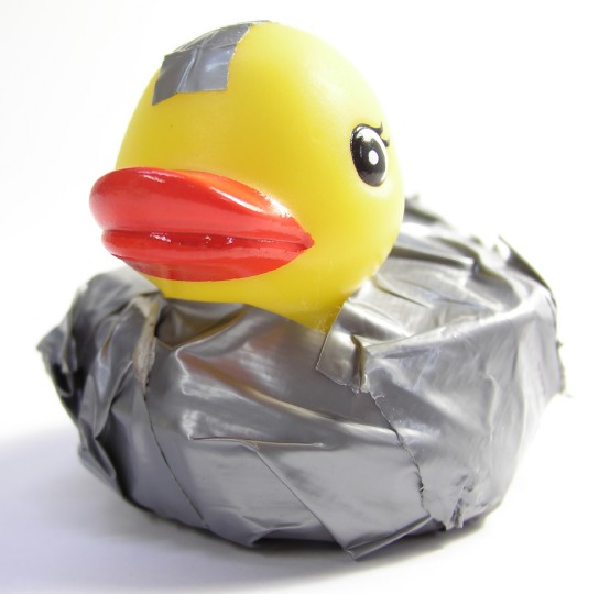 ISC BIND has no logo, so here is a fixed Duck I've stolen from their internets
